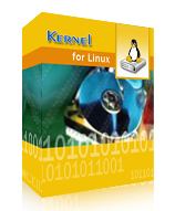 Kernel for Linux Data Recovery